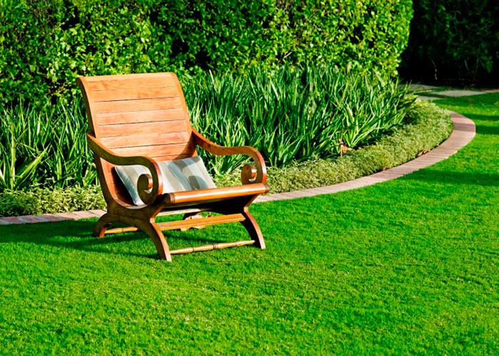 В парках и на придомовых территориях используется декоративный газон