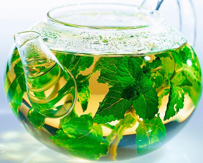 Вкусный и полезный чай для лактации - с мелиссой