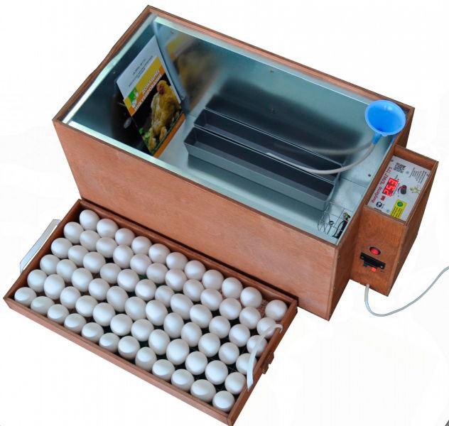 Домашний инкубатор Блиц с автоматическим переворачиванием яиц