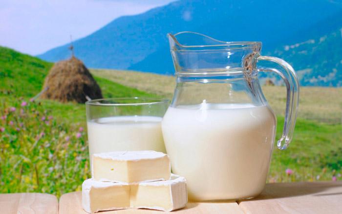 Во время стерилизации молока убиваются полезные молочные микроорганизмы